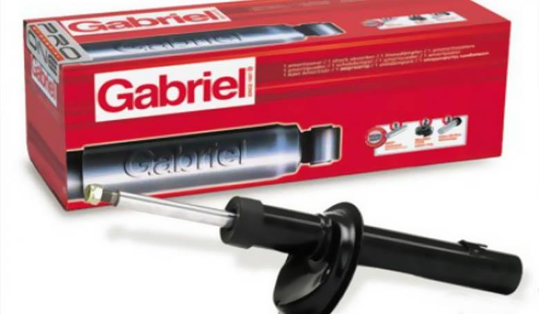 gabriel-amortizeri
